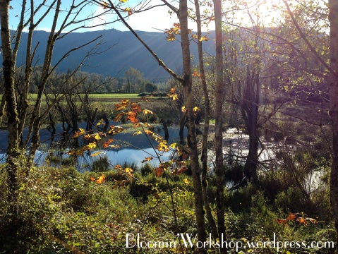 snoqualmie-valley-trail-2