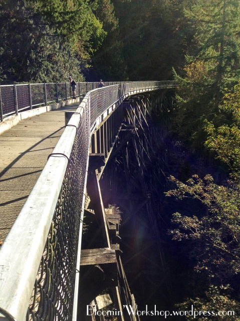 snoqualmie-valley-trail-5