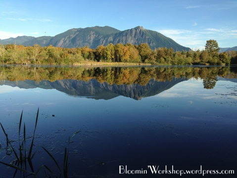 snoqualmie-valley-trail-6