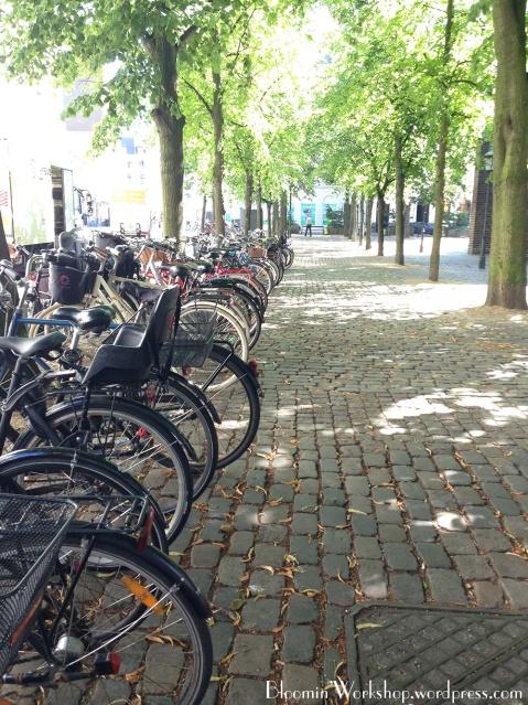 copenhagen-bicycles