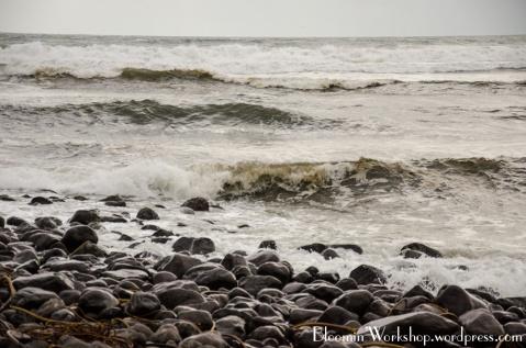 Seaside-waves-2014