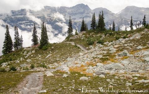 rocky-trail
