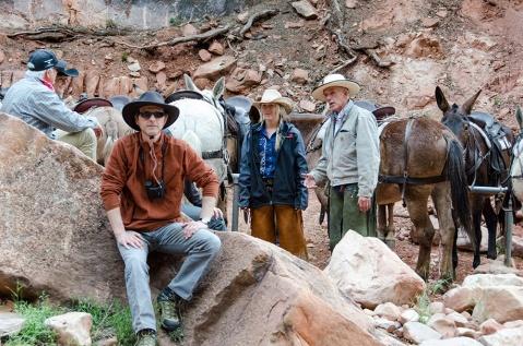 grand-canyon-mule-gary