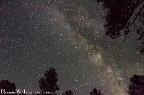 grand-canyon-stars
